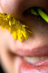 Coït olfactif