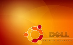 ubuntu_wall_dell