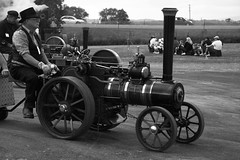 A steam traction engine performing for the crowds near Maitland Station.