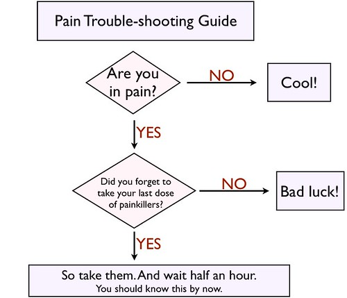 Pain troubleshooting flowchart. Are you in pain? Did you forget to take your last dose of painkillers? So take them. You should know this by now.