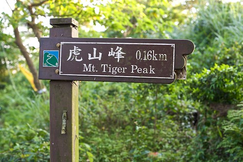 Tiger Mountain trail marker.