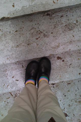rainbow socks in the rain