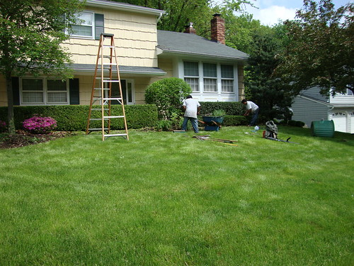 Spring Clean-up:  The Crew at Work