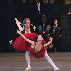 the checkpoint-pose in Don Quixote pas de deux