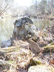 Rock in creek
