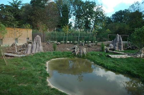 Ameisenbärenanlage im Parc Zoologique de La Bourbansais