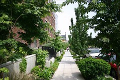 green infrastructure in Seattle (by: City of Seattle)