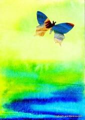 "ATC: Rachel Wolf - ""Fly"""