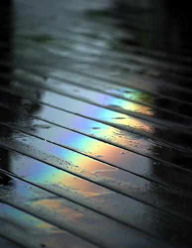 Rainbow / Nick Harris