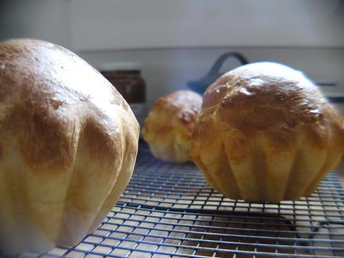 Brioche - Trio after baking