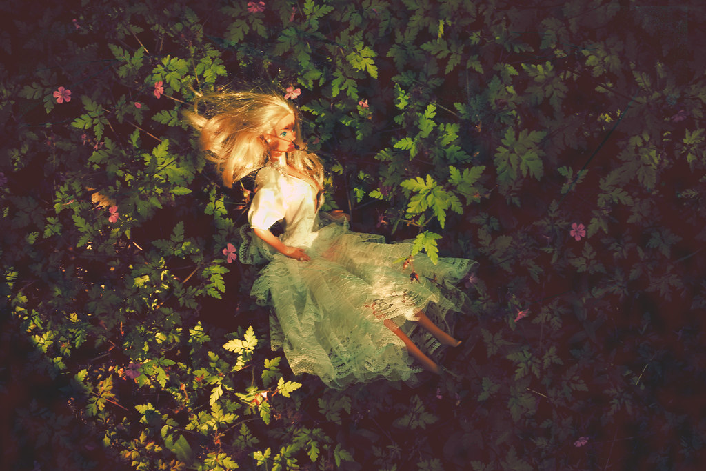 Barbie in wedding dress lost in the wilderness IMG_9794b