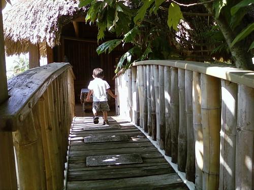 bamboo bridge 2