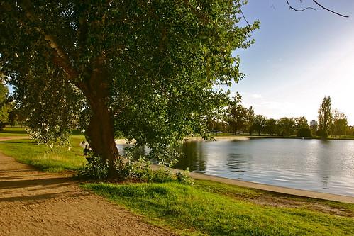 湖、樹、小徑 on Flickr - Photo Sharing!