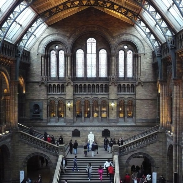 #294 - Natural History Museum