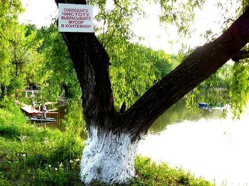 4_Lacul Komsomolist_Balti