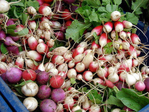 ravishing radishes