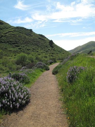 Lower Tennessee Valley Trail by you.