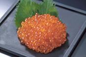 salmon-egg
