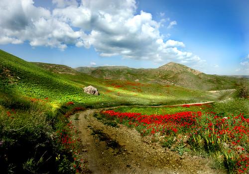 Iran/Khorasane Razavi/Landscape of Torogh