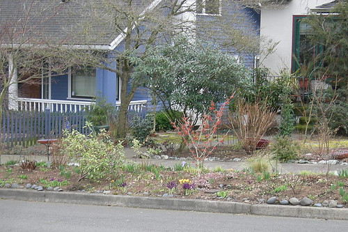 Nifty Portland Parking Strip Garden