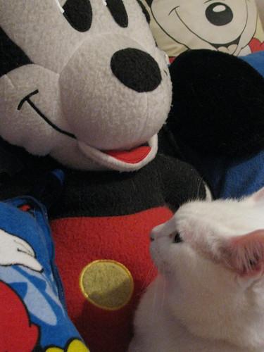 Artemis Among the Mickeys