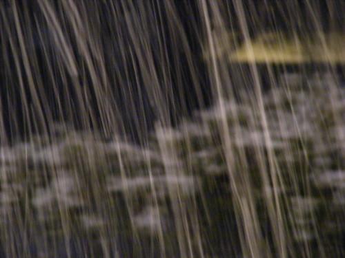 3-1-09 - Falling snow