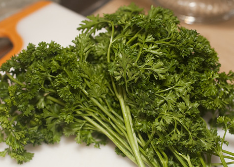 Curly Leaf Parsley