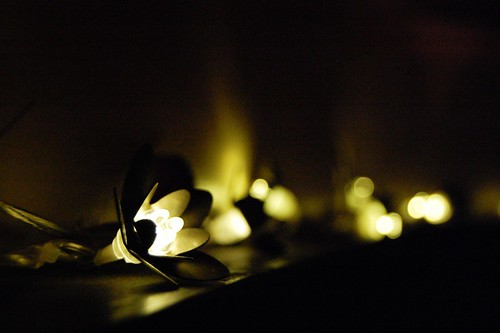 Fairy Flower Lights