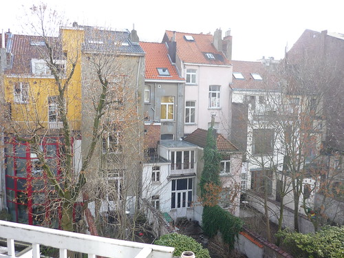 Brussels backyards