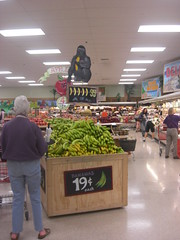 Banana Display at Trader Joe's