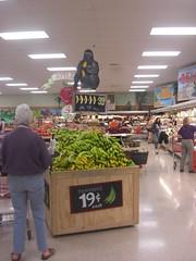 Banana Display at Trader Joe's