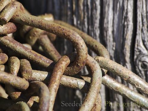 44. Chains