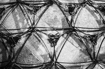 la red - el modulo - la sinapsis