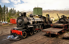 The Kingston Flyer. Otago.