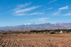 Farmland near Taroudant