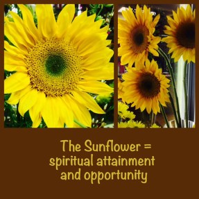 The Sunflower - Lafayette Florist & Greenhouses in Lafayette, Colo.