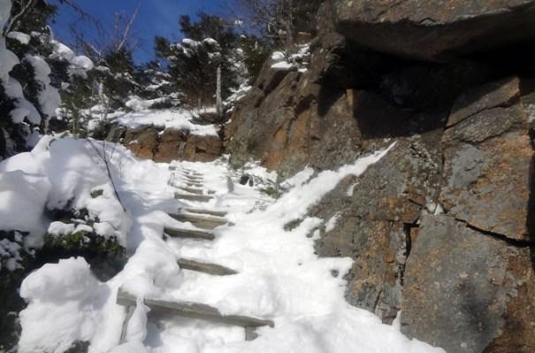 Hi-Cannon Trail Ladder