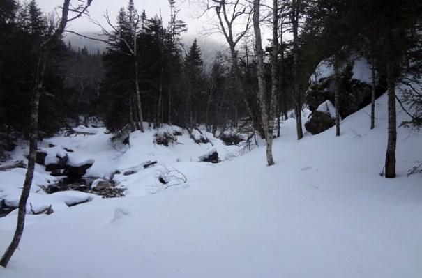 Lower Ammonoosuc Trail