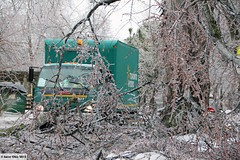 Ice storm damage to Toronto's electricity system