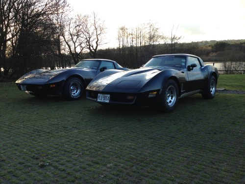 small resolution of tittiesworth 012 notwens tags uk chevrolet chevy corvette 1979 vette 79