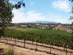 Vista, the Hart Winery, Temecula, California