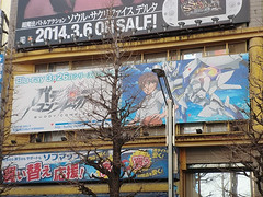 """Akiba March 9 • <a style=""""font-size:0.8em;"""" href=""""http://www.flickr.com/photos/66379360@N02/13556111545/"""" target=""""_blank"""">View on Flickr</a>"""