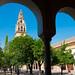 Torre del Aminar e o Patio de los Naranjos