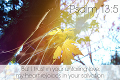 "Psalm 13:5 • <a style=""font-size:0.8em;"" href=""http://www.flickr.com/photos/95703371@N00/9715003413/"" target=""_blank"">View on Flickr</a>"