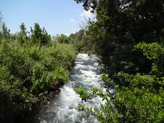 Tel Dan Nature Reserve Jordan river
