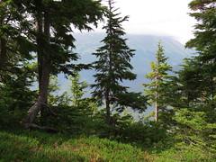 Scenic Alaska Mountains
