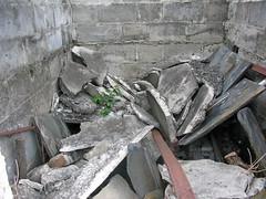 Roth collapse closeup