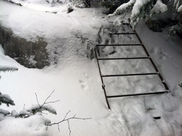 Saddleback AT Ladder