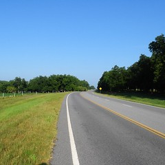 The Road Ahead. Day 72. Rt. 280 in Rochelle, GA. Beautiful, windy day. Lots of farmland and pine farms. #TheWorldWalk #travel #Georgia #wwtheroadahead