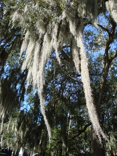 Destrehan Plantation, Louisiana